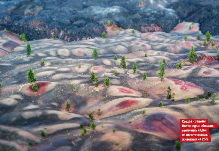 Фото №1 - Только посмотри на это! Лавовые поля и разноцветные дюны Синдер-Коуна, что в США