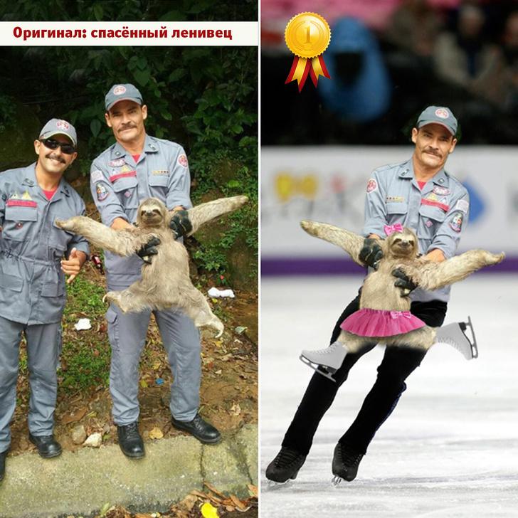 Фото №10 - Лучшие фотожабы года!