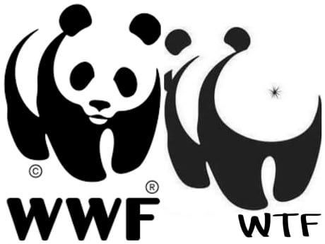 Фото №1 - Всемирный фонд дикой природы (WWF) обвиняют в пытках и убийствах браконьеров