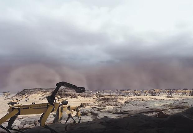 Фото №1 - Дикие роботы-собаки спасаются от песчаной бури. Безумное ВИДЕО!