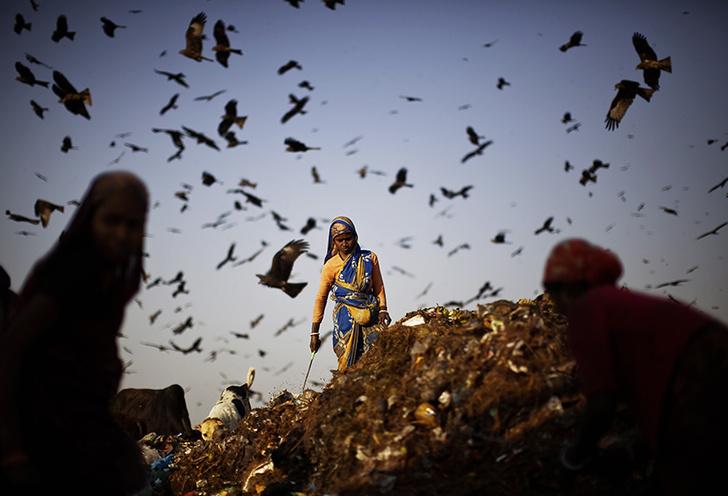 Фото №4 - Легализация отходов: краткая история мусора от древности до наших дней