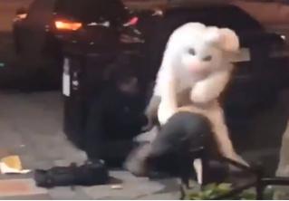 Во Флориде прохожего избил человек в костюме пасхального кролика (видео)
