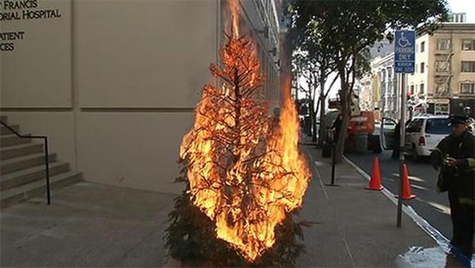 Фото №11 - Елочка, зажгись! 14 фотографий новогодних разрушений
