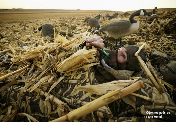 Фото №1 - Как подманить животное, чтобы сделать фото