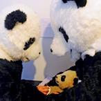Панда на вынос