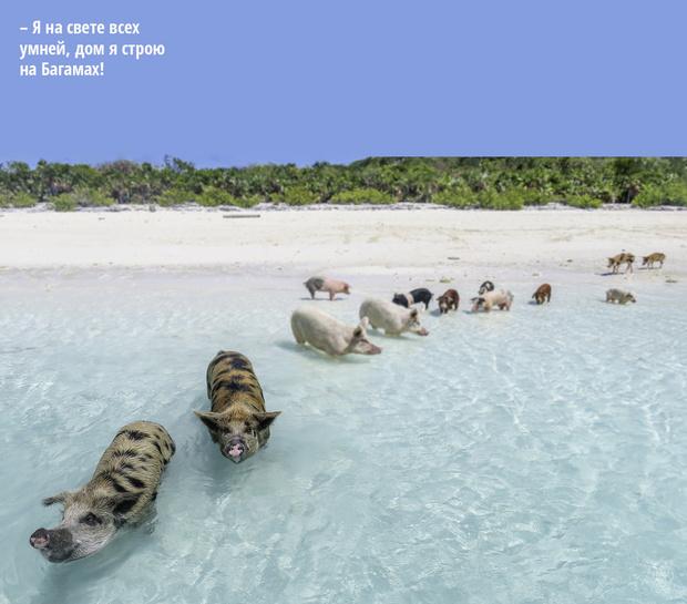 Фото №14 - Порция суши: 10 удивительных островов