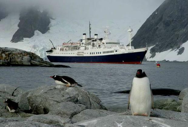 Фото №3 - 25 фактов об Антарктике