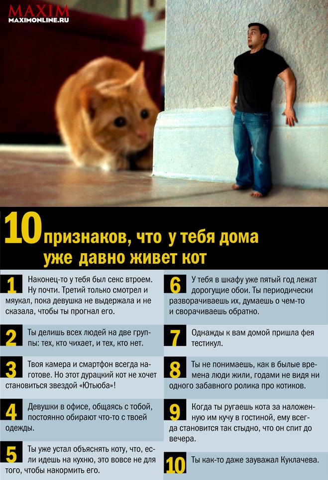 Фото №1 - 10 признаков, что у тебя дома уже давно живет кот