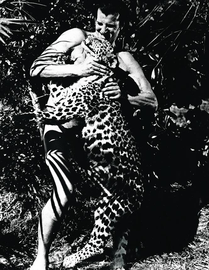 Фото №8 - Крупный домашний кот: как человечество пыталось приручить больших кошек
