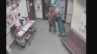Грабитель попытался украсть из приюта для животных аппарат с резиновыми мячиками (ВИДЕО)
