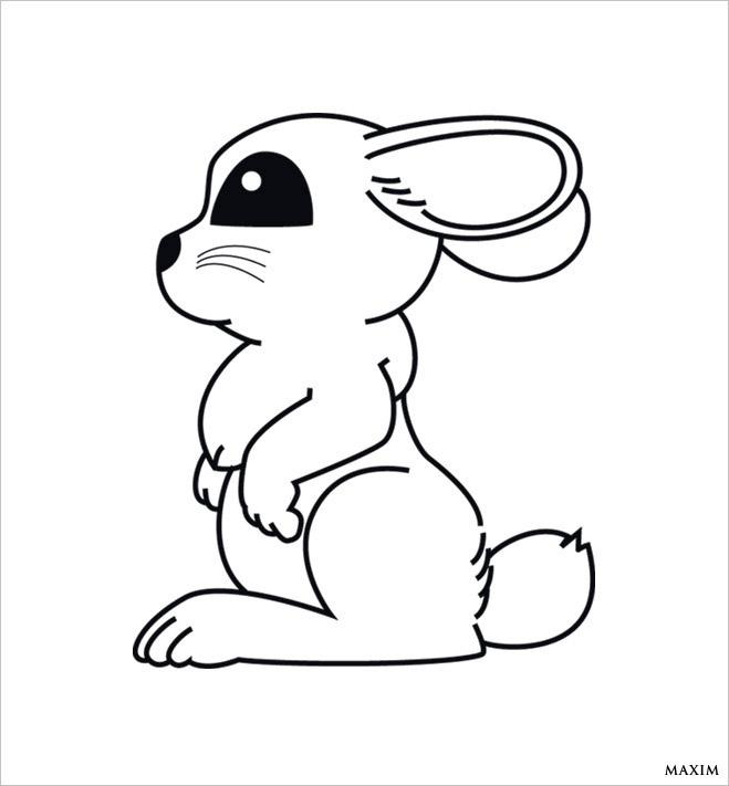 Кролик - иллюзия
