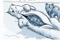 Фото №3 - Как согреться медведем
