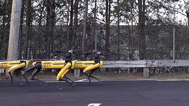 Фото №1 - Упряжка ритмично марширующих робособак тянет грузовик (видео)