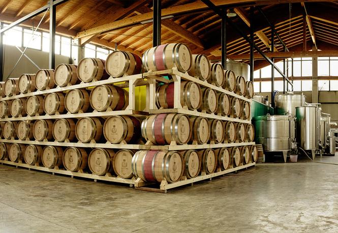 Что такое вино сорта аппассименто, почему о нем стыдно не знать и с чем его лучше пить