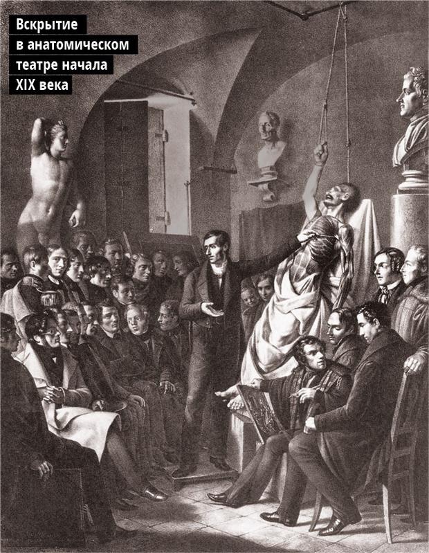 Вскрытие в анатомическом театре начала XIX века