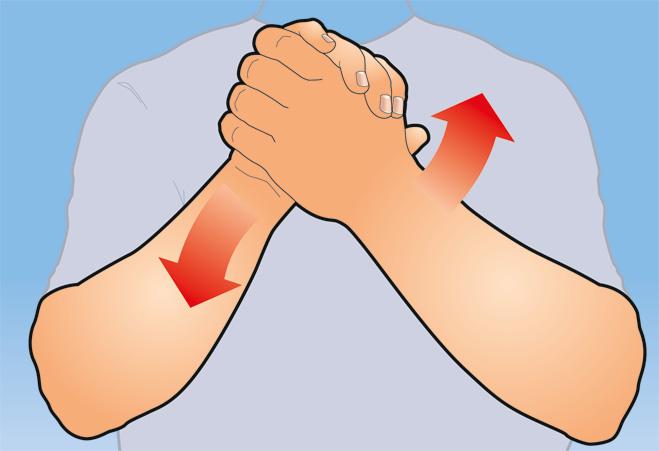 Фото №1 - Как натренировать руки, прилагая минимум усилий