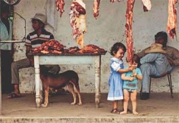 Фото №1 - Как сохранить мясо без холодильника