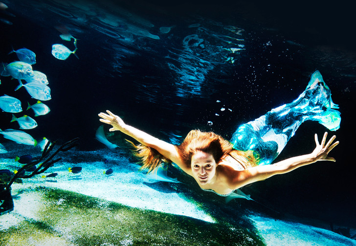 Фото №1 - Как завести морской аквариум