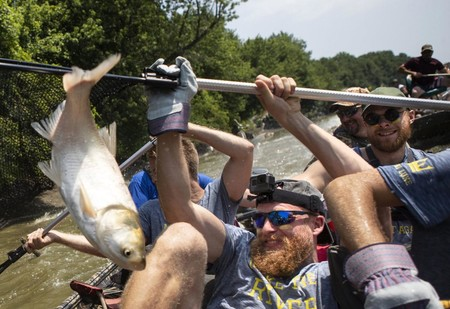 Шокирующее ВИДЕО, на котором беззащитные туристы отбиваются от летающих рыб