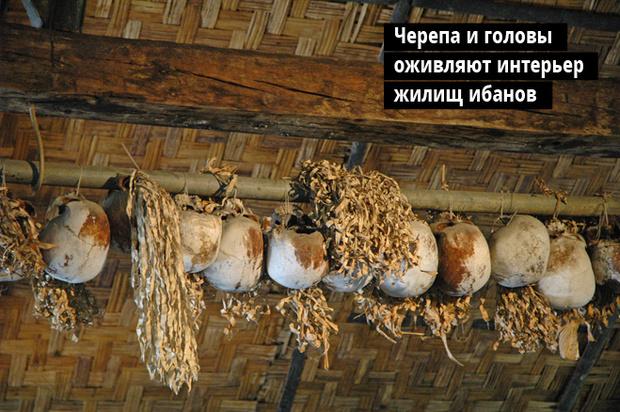 Черепа и головы оживляют интерьер жилищ ибанов