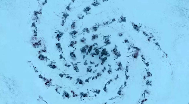 Фото №2 - Вот что означают зловещие символы, которые оставляет Король Ночи