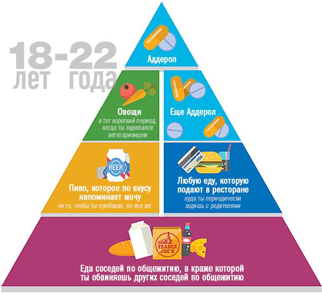 Пищевая пирамида в 18-22