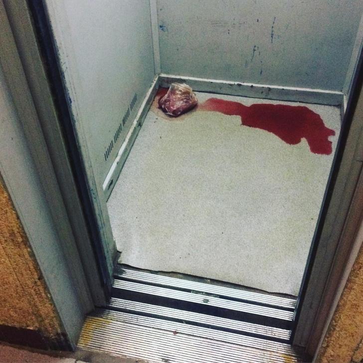 Фото №2 - Девушка обнаружила жуткий предмет в лифте своего дома