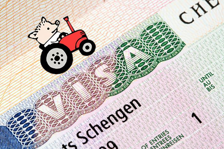 Фото №1 - Дороже, дольше, сложнее: новые правила получения шенгенской визы