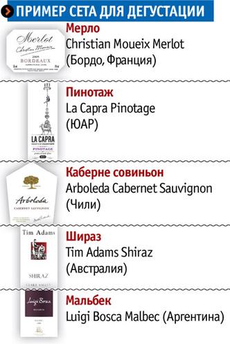 Фото №2 - Путеводитель по винному миру, благодаря которому ты наконец-то научишься выбирать хорошее вино