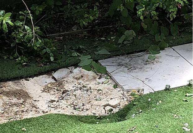 Фото №1 - Нелегал из Кении пытался долететь до Лондона в отделении для шасси, но замёрз насмерть, выпал и чуть не задавил загорающего в саду британца