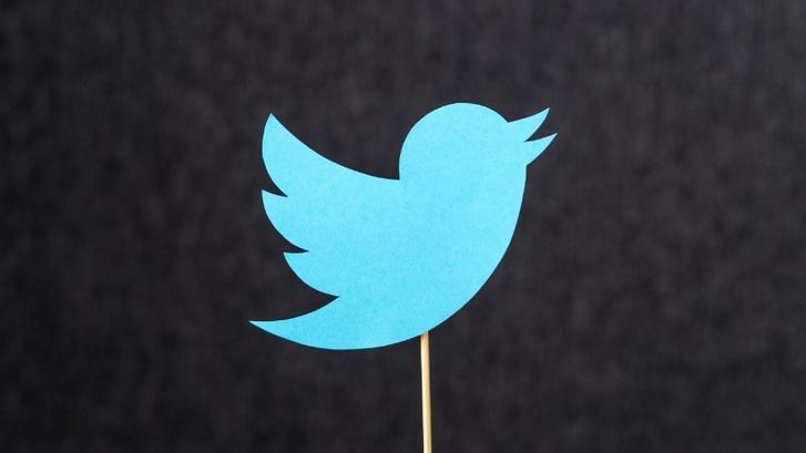 Фото №1 - Похоже, Twitter все же разрешит редактировать твиты