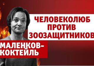 Александр Маленков против зоозащитников (4-й выпуск нашего шоу «Маленков-коктейль»)