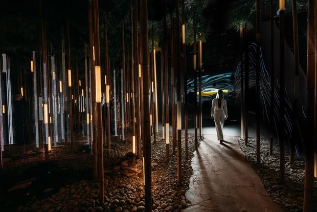 Фото №3 - Lexus Dome — новое мультифункциональное пространство в Москве