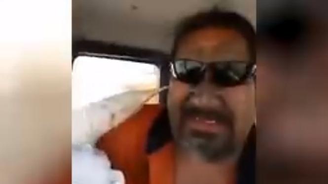 Новозеландец спас чайку, а она атаковала его (предательское ВИДЕО)