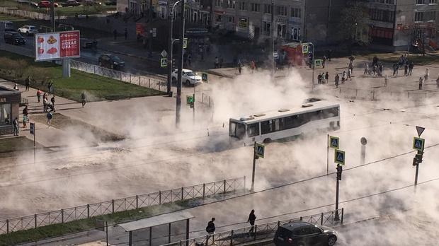Фото №1 - В Санкт-Петербурге автобус с людьми провалился в яму с кипятком посреди улицы (видео)