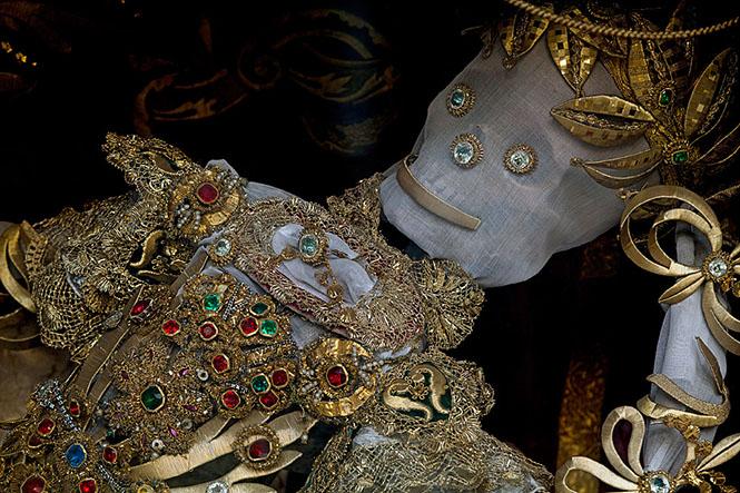 Фото №2 - Жертвы требуют красоты! Прекрасная в своей дикости коллекция нарядных скелетов