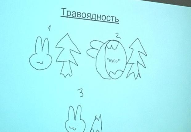 Фото №1 - «Презентация года» по биологии, которая заменит тебе школьный курс
