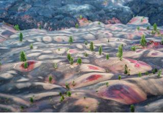 Только посмотри на это! Лавовые поля и разноцветные дюны Синдер-Коуна, что в США