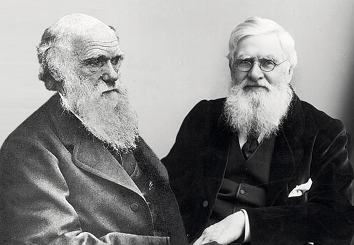 Фото №2 - Научные открытия, которые пришли сразу в две головы