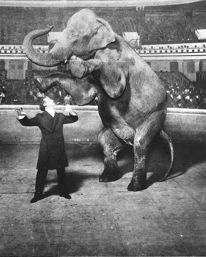 Фото №2 - 5 знаменитых фокусов Гарри Гудини, секрет которых удалось раскрыть