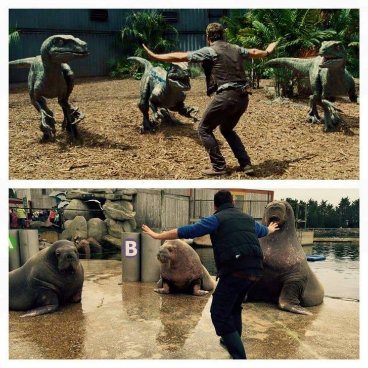 Фото №2 - Рапторо-мем взрывает животы интернет-пользователей!