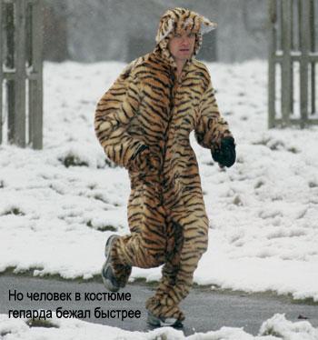 Фото №1 - Как правильно устраивать пробежки зимой