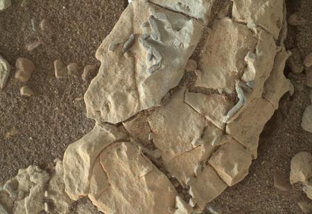 NASA скрывает доказательства того, что на Марсе была жизнь! Громкие разоблачения устами отважного ученого