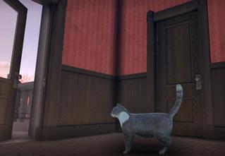 Трейлер видеоигры, в которой нужно будет играть за обычного кота