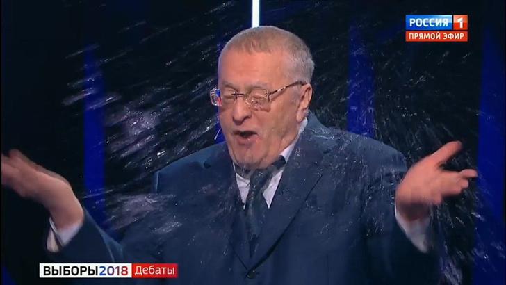 Фото №1 - Перепалка Жириновского и Собчак в эфире «России-1». Видео и лучшие шутки!