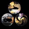 Фото №2 - The Life of Pablo Канье Уэста и другие главные музыкальные альбомы апреля!