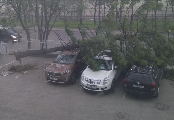 Фото №1 - Ураган в Москве: подборка самых пугающих видео и фото!