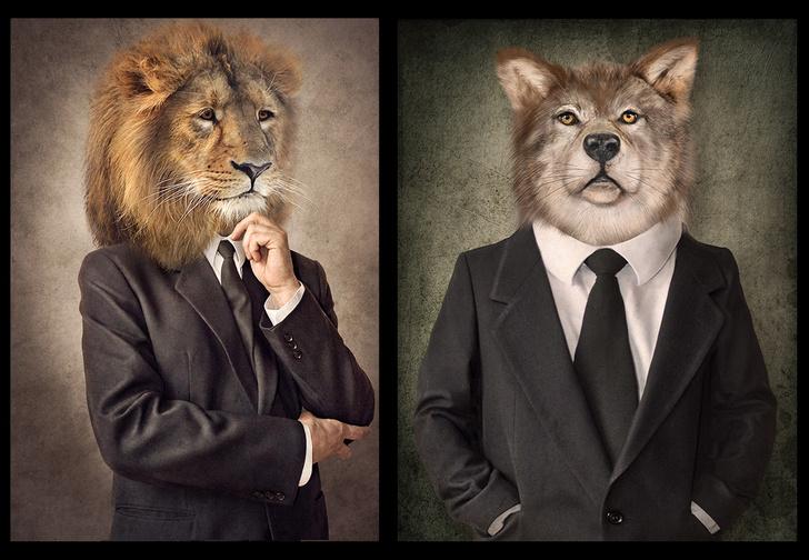 Фото №1 - Жаворонок и сова уже неактуальны. Узнай, кто ты: медведь, волк или, может, дельфин?