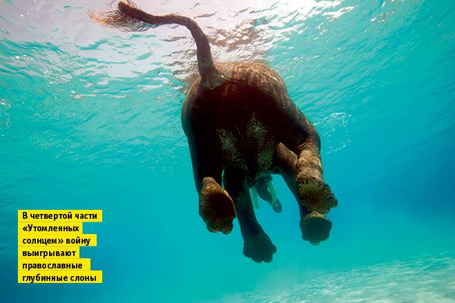 Фото №7 - Слонопотамия. 13 фотоисторий из жизни слонов