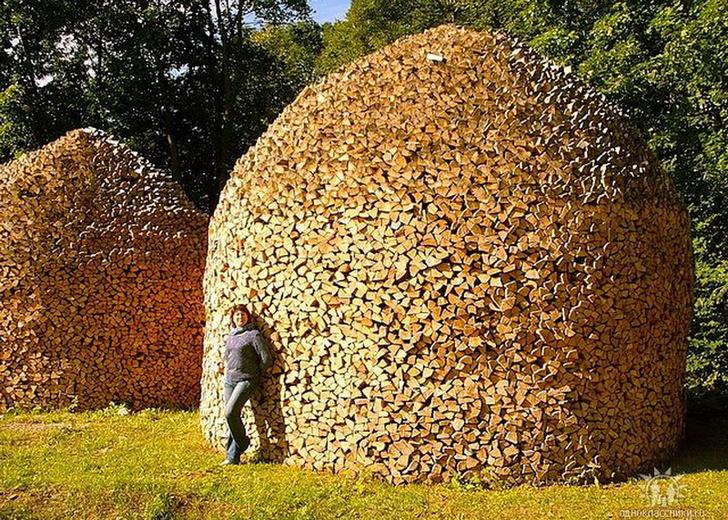 Фото №8 - Как играть в тетрис дровами